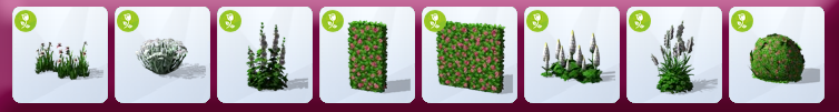 204499plantes.png
