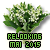 605180concoursrelookingmai2015.png