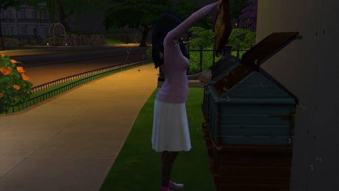 74 Elodie est une amoureuse des chats acheter un griffoir 3.jpg