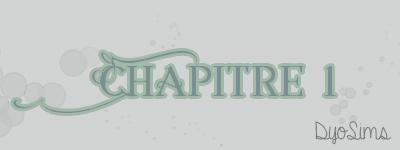 Chapitre 1.png