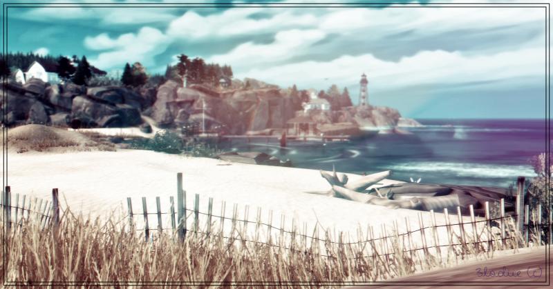 paysage2.png