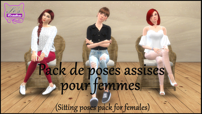 presentation poses assises.png