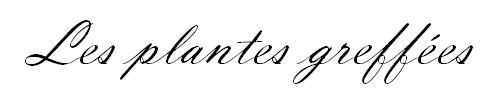 sans-titre-3-png.110239
